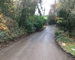 Chittlehamholt country road with hedges and trees either side