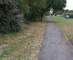 footpath along roadside with greenary and trees along the path