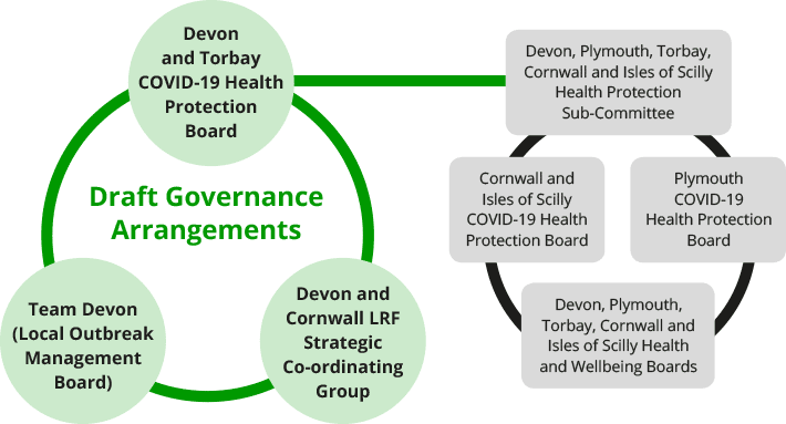 The draft governance arrangements described in a diagram.