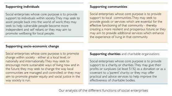 Social Enterprise typology breakdown