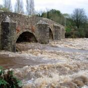 Bickleigh floods by Pauline Burden