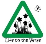 Life on the Verge logo - flowers in green triangle shape with butterfly