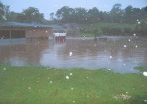Flooding in Ludbrook