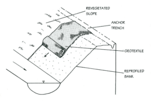 schematic of geotextile installation to encourage growth.
