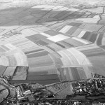 A black and white aerial photograph of an open area, covered with curving strips of different shades, indicating differing cultivation in each adjacent strip.