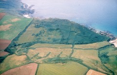 A colour aerial photograph of prehistoric field boundaries, preserved as low banks under rough pasture at Deckler's Cliff, South Hams.