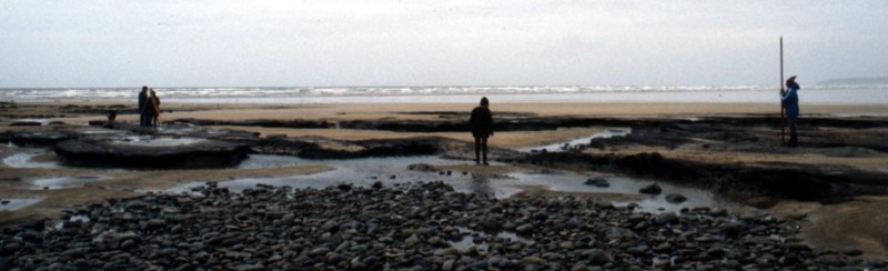 Westward Ho! submerged land surface in the 1980s. Photograph: Devon County Council
