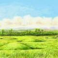 Burston Moor Artist's Impression