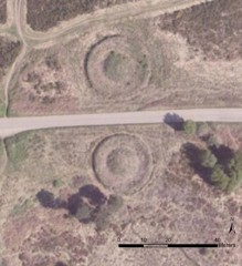 Earthwork mounds on Bicton/Woodbury Common. Next Perspectives PGA Imagery SY0386 22-MAY-2010. © Getmapping Plc.