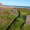 Rock cut cart tracks at Exmouth.