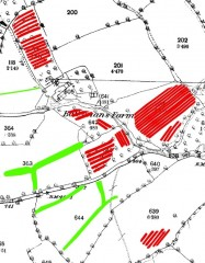 A historic map of the area around the farm, with orchard banks depicted as red parallel linear lines in the fields to the north, east and south.