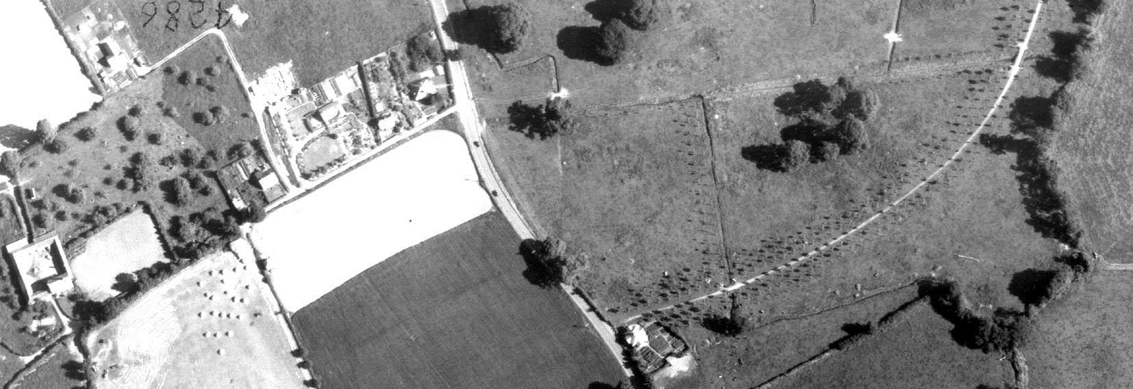 Young replacement trees line the drive at Winslade Park in 1955. RAF/540/1649 F22 0032-0033 25-JUN-1955 Historic England (RAF Photography).