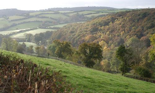 ashburton dartmoor landscape image