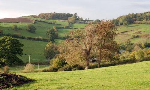 east dartmoor landscape picture