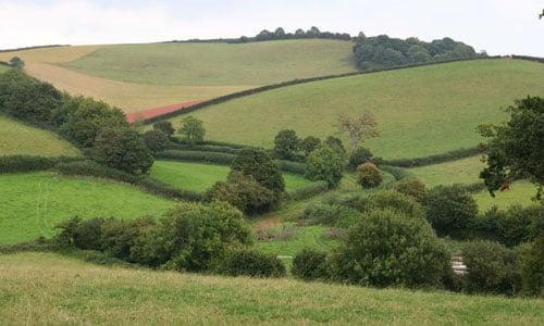 torbay hinterland landscape picture