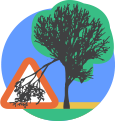 Hazardous or fallen trees