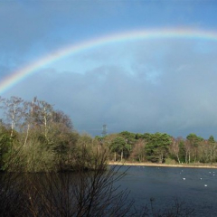 """Rainbow over lake - by Julie Tovey • <a style=""""font-size:0.8em;"""" href=""""http://www.flickr.com/photos/27734467@N04/26189062013/"""" target=""""_blank"""">View on Flickr</a>"""
