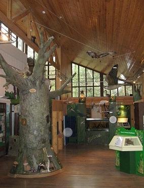The Interpretation Centre