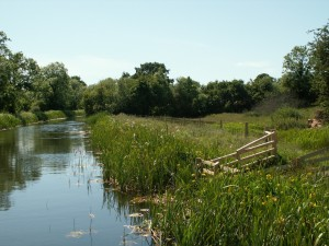 Fencing along edge of canal to create a buffer strip between the water and farmland with drinking points for livestock