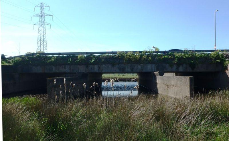 Exe Channel Flood Relief Bridge
