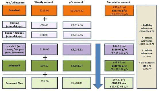 flowchart showing the foster care fees and allowances