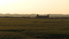 A colour graound photograph of a ruined agricultural building in a flat landscape of reclaimed fields.
