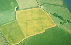 The cropmarks of two prehistoric enclosures and a prehistoric ring ditch near Kingsbridge show the survival of below ground archaeological features.