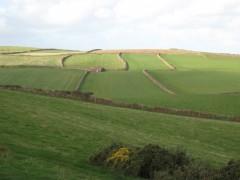 Curving fields