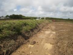 Hedgerow creation