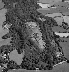 An aerial photograph of the hillfort in 1984, showing a small part of the ramparts – the rest are obscured by tree cover. © Frances Griffith, Devon County Council.