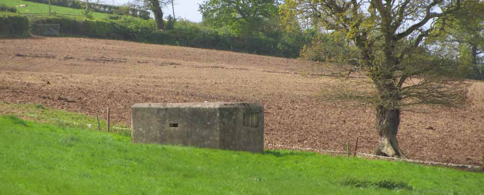 Heavy machine gun emplacement on the Taunton Stop Line; additional detail on its shape and size was added from the aerial photograph evidence. Photograph: Stephanie Knight