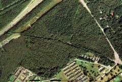 A colour aerial photograph of a wooded area.