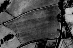A black and white aerial photograph of a cultivated field, within which is a pale oblong cropmark.