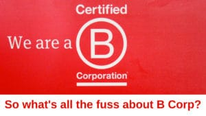 B Corp logo with the title 'So what's all the fuss about B Corp?'