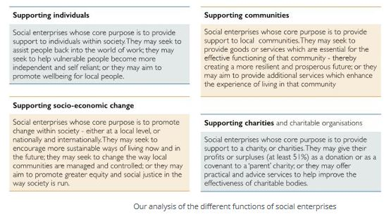 Social Enterprise typology breakdown