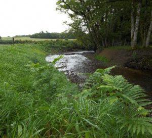 A photo of river restoration