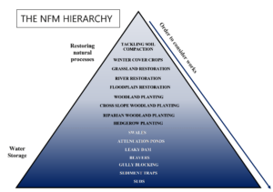 Diagram showing the order to consider carry out NFM works, the NFM Hierarchy