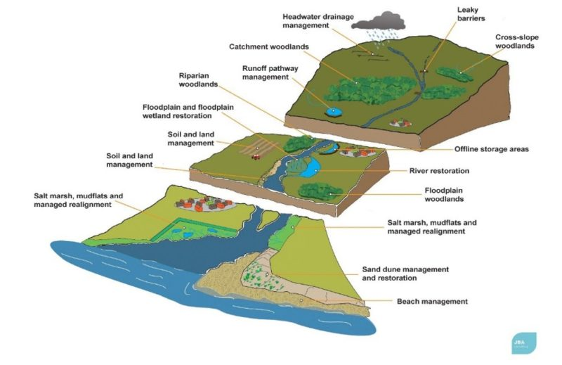 Diagram of river catchment showing opportunities for natural flood management