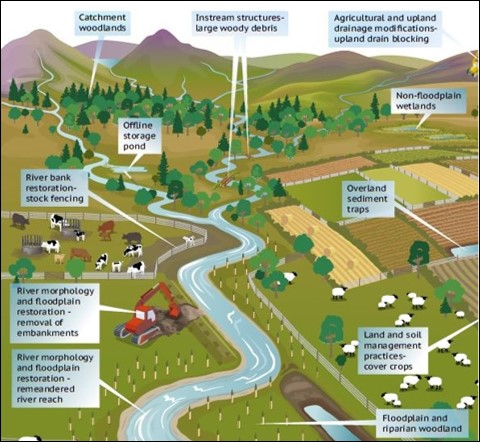 A diagram of a catchment showing natural flood management being used.