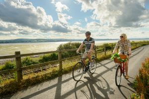 A scene from the Exe Estuary Trail