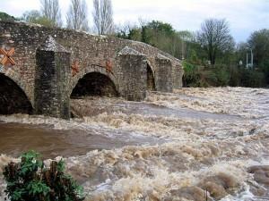 Bickleigh Floods