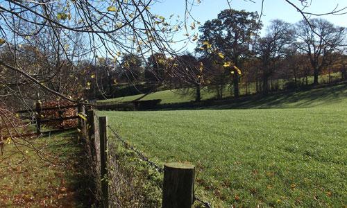 dca crwys morchard landscape picture