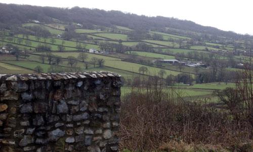 cullompton rolling farmland landscape picture