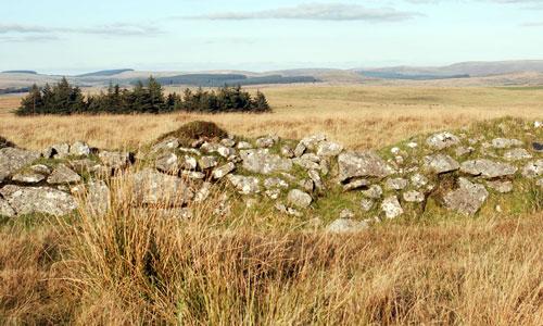 high dartmoor south landscape image