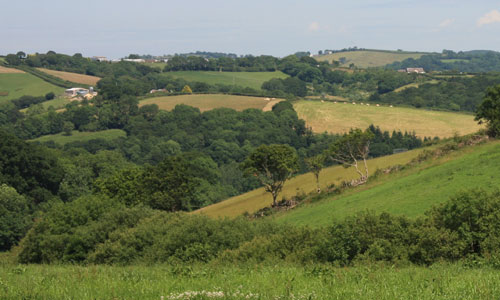 teign valley slopes landscape picture