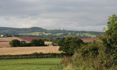 haldon ridge and foothills landscape picture