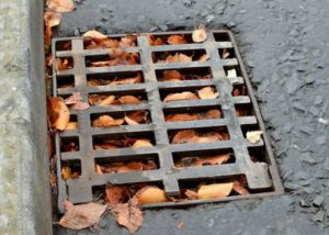 drainage cover in road full of leaves