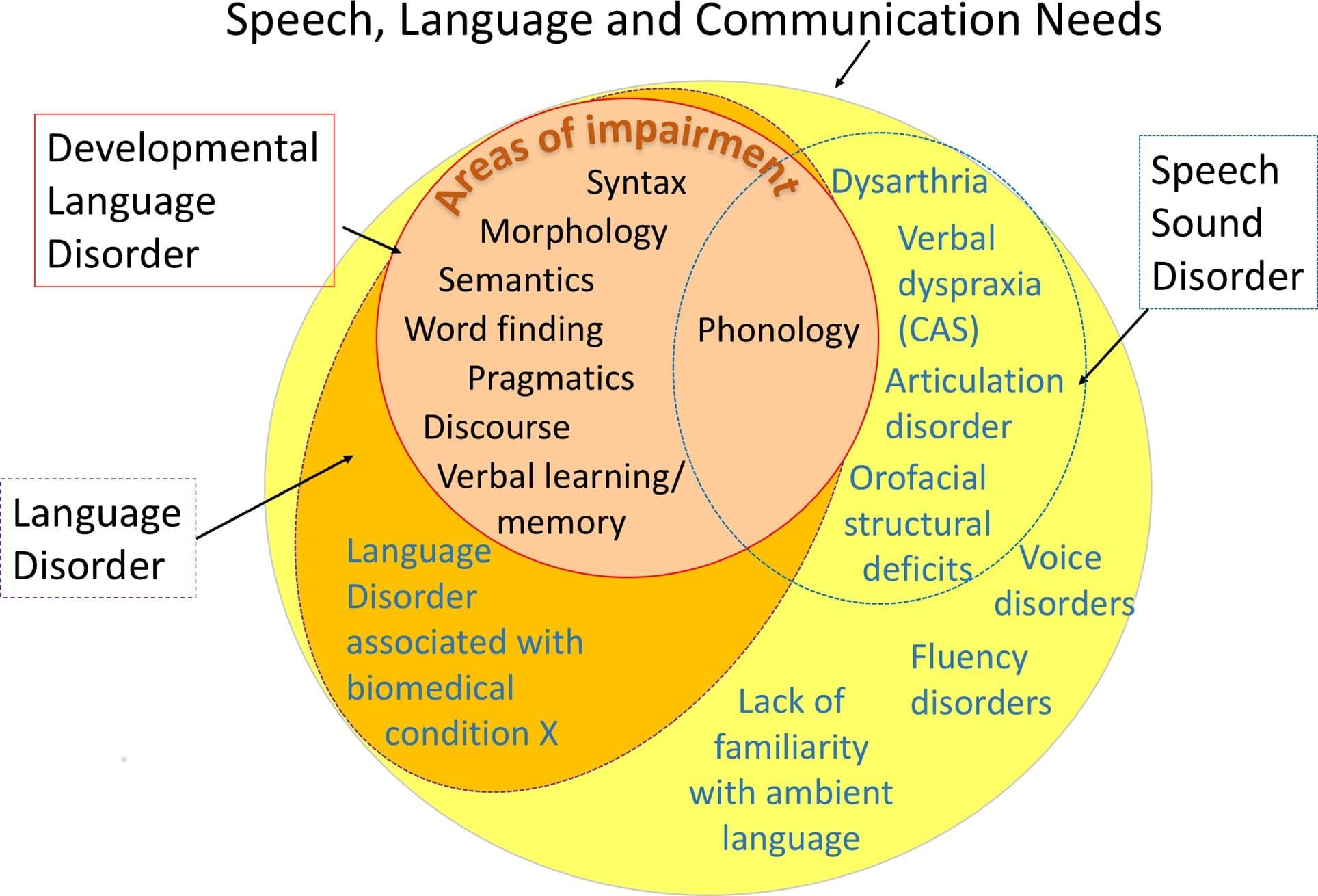 A diagram displaying Speech, Language and Communication Needs
