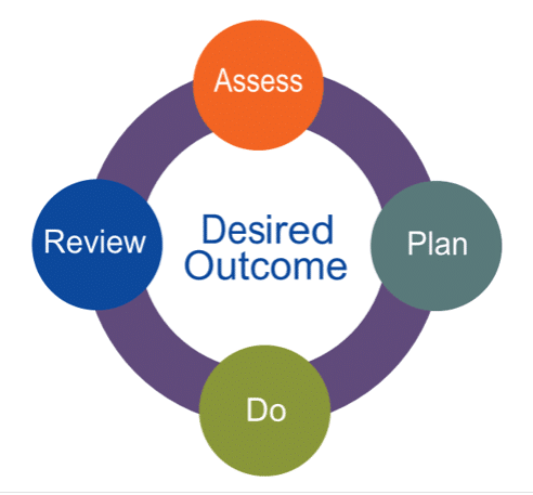 assess plan do review